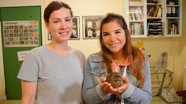 Miriam (links) arbeitet als Tierpflegerin. Anna schaut ihr bei der Pflege von Feldhasen und Wildkaninchen zu.