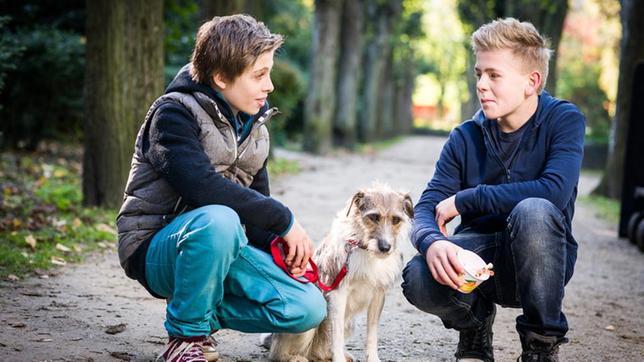 Till (Otto von Grevenmoor, links) und Tom (Vincent Grages) hocken neben Hündin Socke.