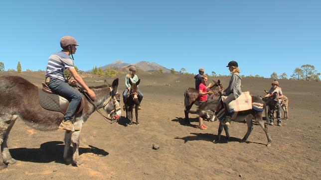 Die Abenteurer reiten auf Eseln