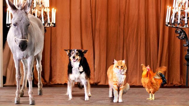 """Esel, Hund, Katze und Hahn als """"Bremer Stadtmusikanten"""" aus dem gleichnamigen Märchen der Gebrüder Grimm"""