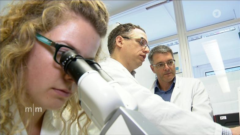 Video: Nachwachsendes Herzgewebe - ARD-Mittagsmagazin - ARD   Das Erste