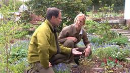 Iris Ney und Markus Phlippen im Beet (Bild: WDR (TV-Bild))