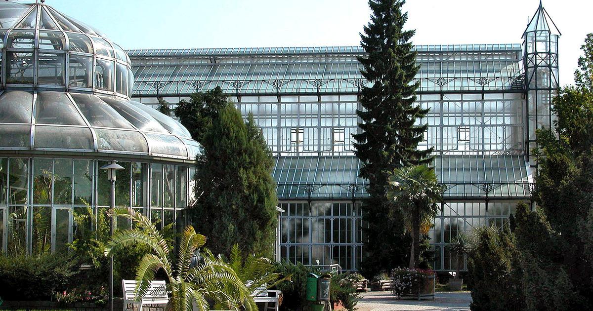 Botanischer garten berlin ratgeber haus garten ard - Ratgeber haus garten ...