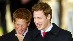 Harry und William 2003