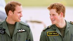 2009 Royal Air Force Base Shawbury, Harry und William