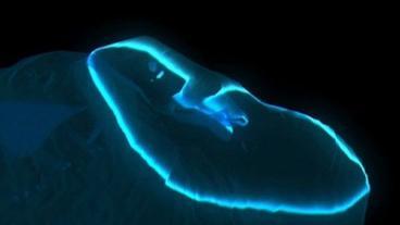 Die Lösung für die Behandlung der Nägel von gribka
