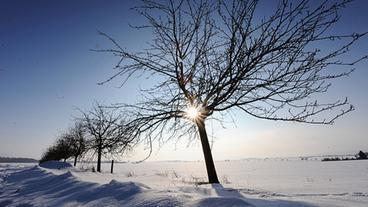 Eine verschneite Landschaft in der Sonne