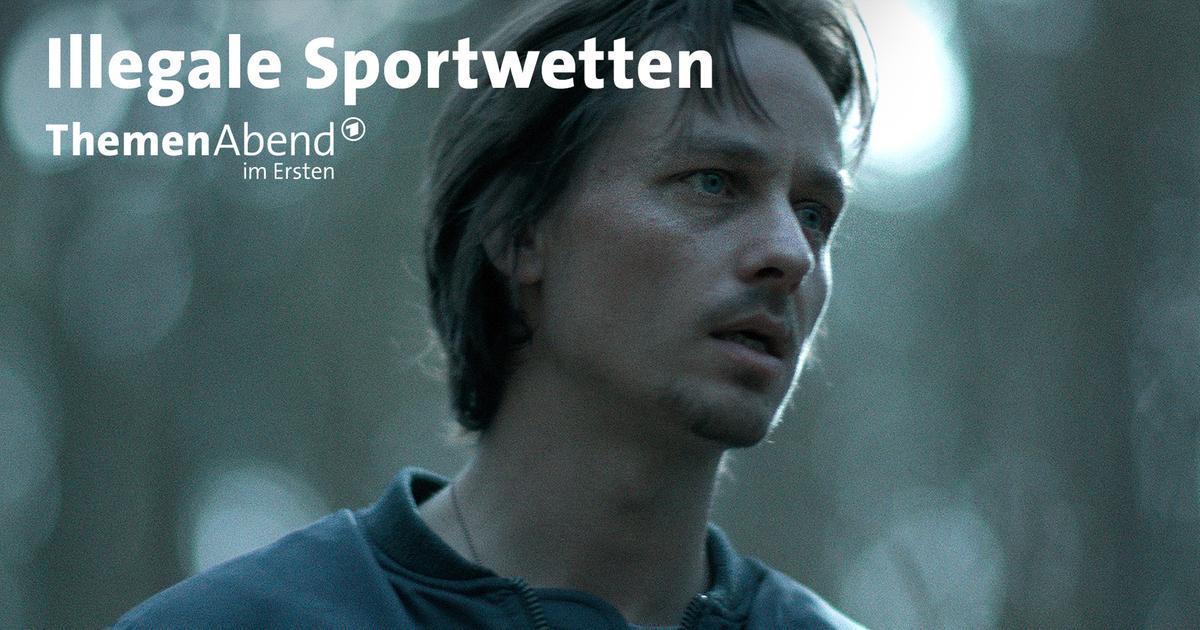 sportwetten programm