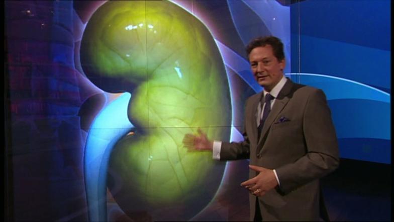 video die niere reinigt unser blut  hirschhausens quiz  ~ Geschirrspülmaschine Reinigt Schlecht