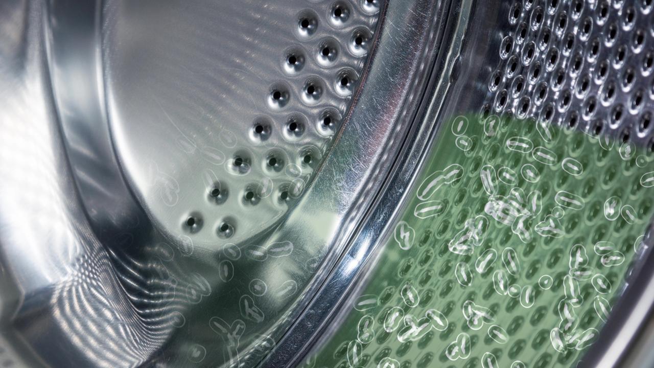 Waschmaschine Geruch wenn die waschmaschine stinkt wer weiß denn sowas ard