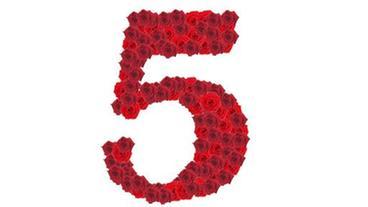 wir feiern 5 jahre rote rosen ard das erste. Black Bedroom Furniture Sets. Home Design Ideas