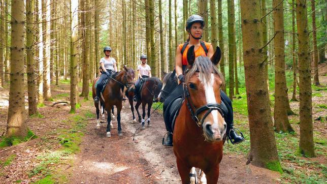 Im Wald muss die Reitergruppe besonders aufmerksam sein. Tiere oder Geräusche könnten die Pferde erschrecken. Weiteres Bildmaterial finden Sie unter www.br-foto.de.