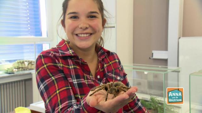Anna mit einer Vogelspinne auf ihrer Hand
