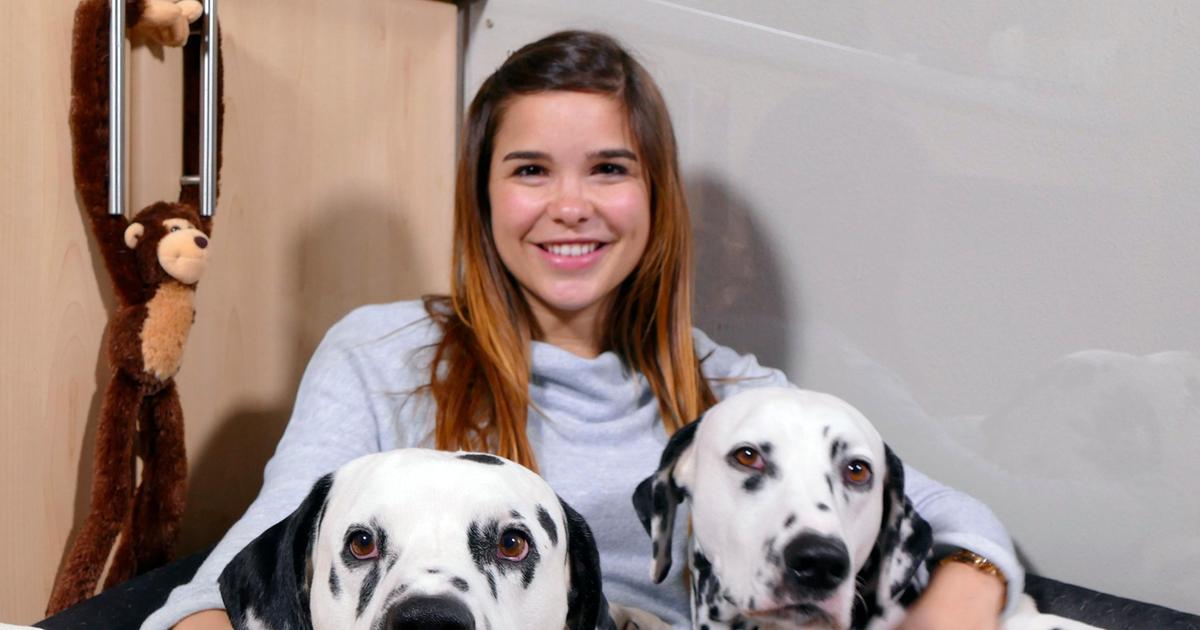 Video Dalmatiner Anna Und Die Wilden Tiere Ard Das Erste