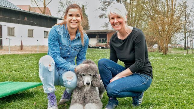 Anna und Silvia mit der Großpudeldame Abby. Großpudel werden circa 60 Zentimeter hoch.