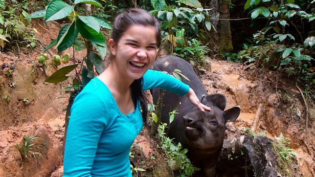Anna Und Die Wilden Tiere Elefanten