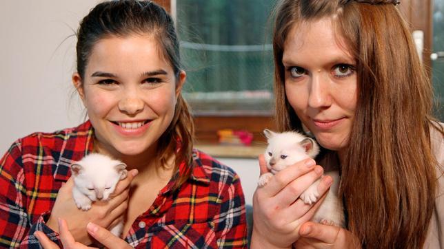 Marinas (rechts) neue kleine Kater haben noch keine Namen.