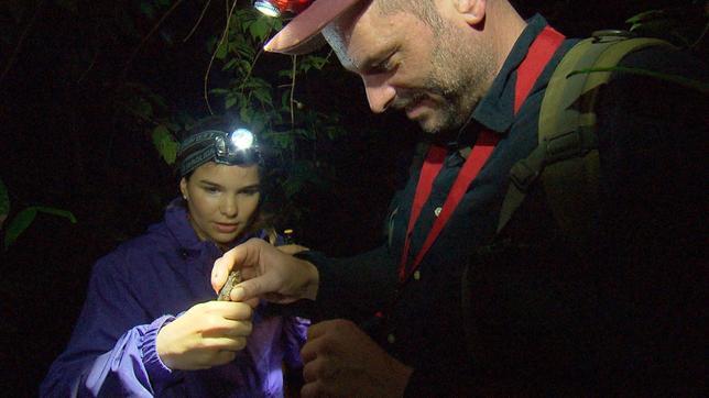 Nachts sind die Frösche wach. Doch Anna und André fangen eine Kröte. Im Vergleich zu Fröschen haben die einen trockenen und warzigen Körper.