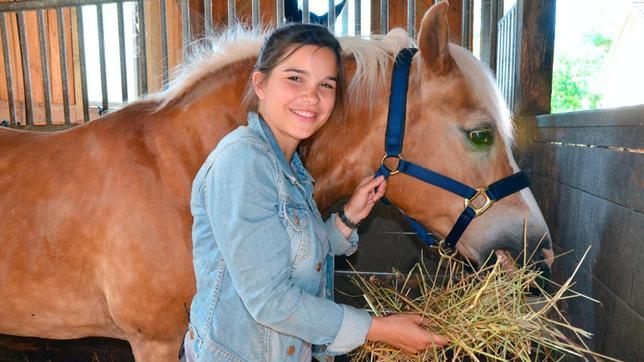 """Pferde fressen hauptsächlich Heu und zwischendurch Stroh. Anna hat """"Quicket"""" damit reichlich versorgt."""