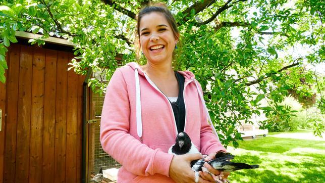 Von Michi lernt Anna, wie man eine Taube am besten in der Hand hält. Tauben sind keine Kuscheltiere. Vorsichtig anfassen kann man sie aber trotzdem. Weiteres Bildmaterial finden Sie unter www.br-foto.de.