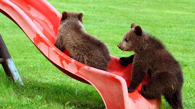 Ein Spielplatz ist nicht nur für Kinder ein Abenteuer. Weiteres Bildmaterial finden Sie unter www.br-foto.de.
