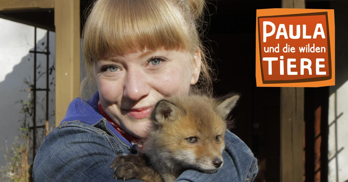 Paula Und Die Wilden Tiere Moderatorin