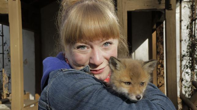 Paula und die wilden Tiere Wie schlau ist der Fuchs? 04.01.2014
