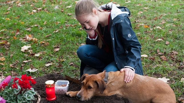 Paulina mit Hund Carlo auf dem Friedhof