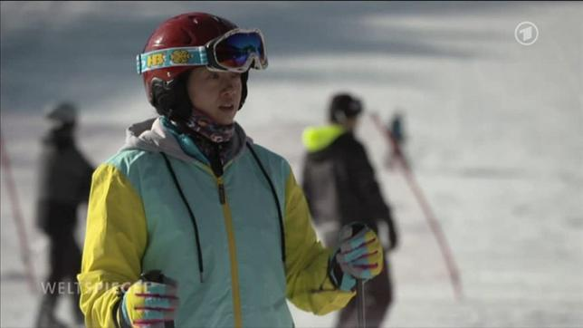 richtig skifahren bremsen