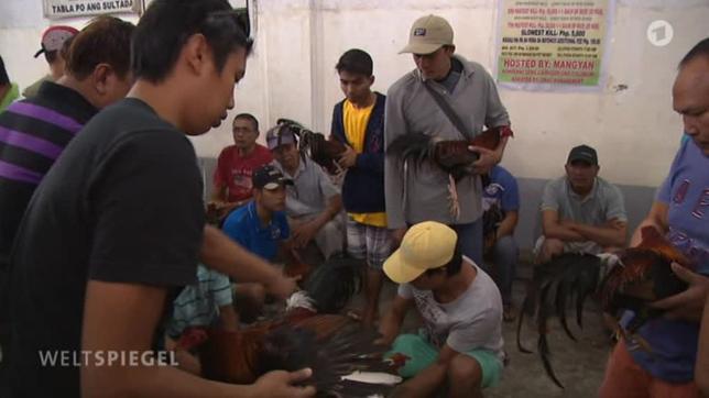 häuser philippinen kaufen