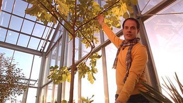 Haus im Glashaus - Ratgeber: Haus + Garten - ARD | Das Erste