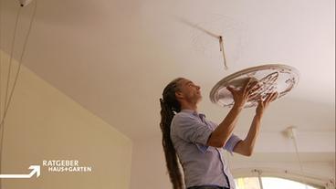 Workshop Haus - Ratgeber: Haus + Garten - ARD | Das Erste
