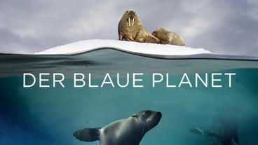 Der Blaue Planet Wdr