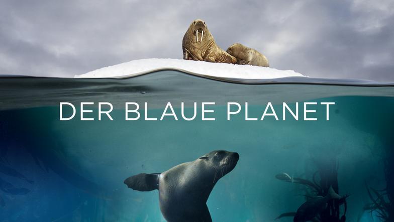 Das Erste Der Blaue Planet