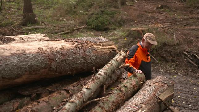 Ein Mann steht hinter einem Stapel Holzstämmen.