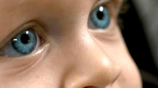 Prozent augenfarbe Die Augenfarbe