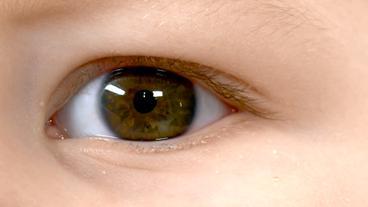Augen blaue grüne oder Braun, Grün