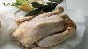 hühnersuppe bei erkältung video