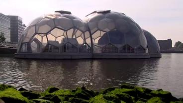 Floating Pavillon in Rotterdam der Firma Deltasync