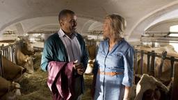Partnervermittlung landwirte bayern