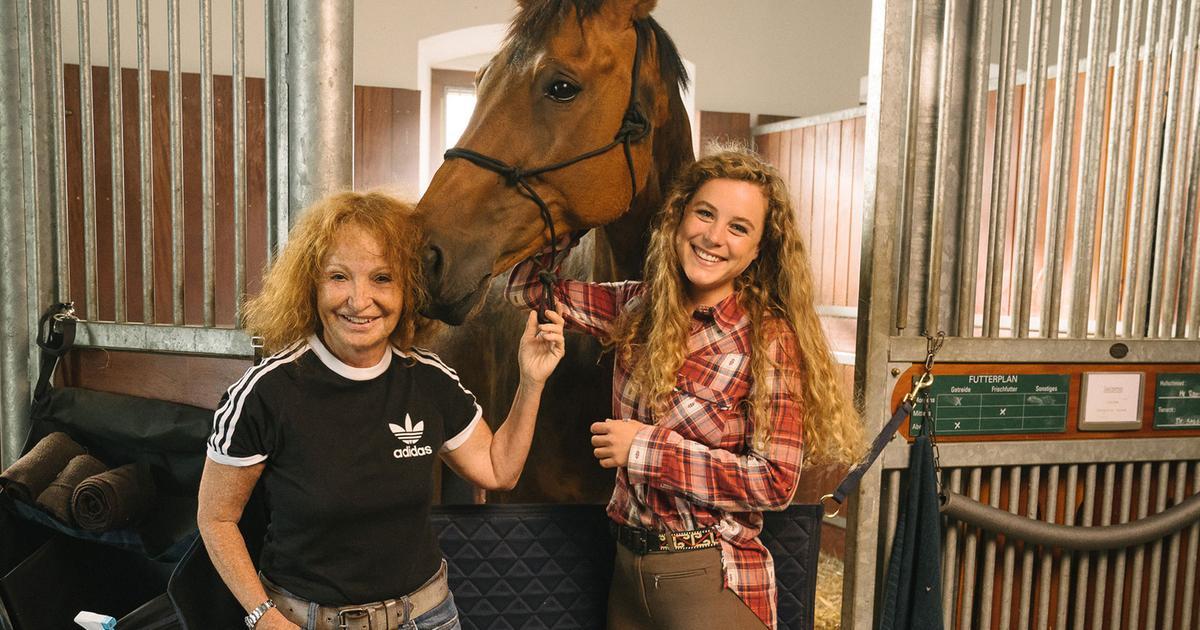 Die Pferde Von Wildenstein Ausstrahlung