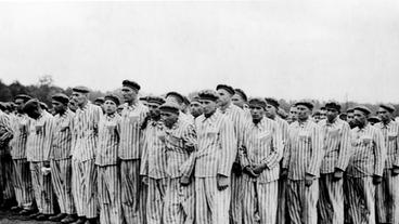 Bordell Dachau