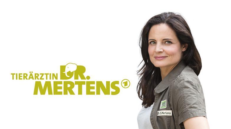 Ard Tierärztin Dr. Mertens